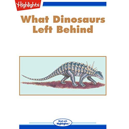 What Dinosaurs Left Behind copertina