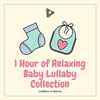 1 Hour of Relaxing Baby Lullaby Collection