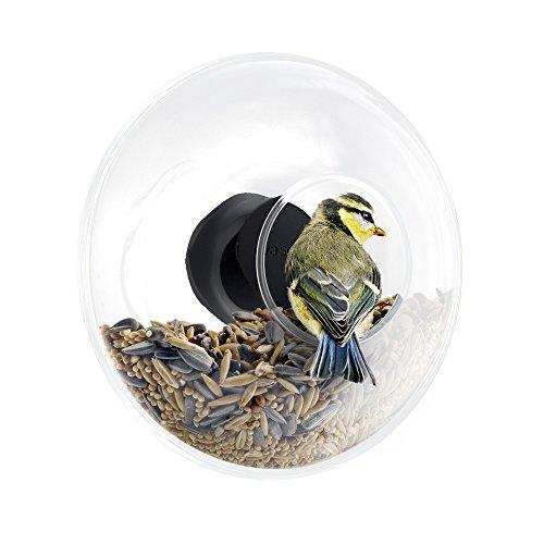 EVA SOLO 571048.0 Vogelfutterkugel für Fensterscheibe, Volumen 90 ml, transparent