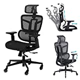 Ergonomic Office Chair, Executive Chair with Lumbar Support High Back Mesh Desk Chair Big Computer Chair with 4D Armrests Headrest Swivel Rolling Task Chair for Conference Home Office Adults