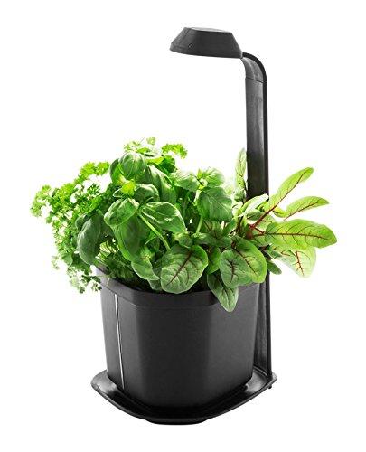 Tregren Genie autonomer LED Blumenkasten/Blumentopf für drinnen