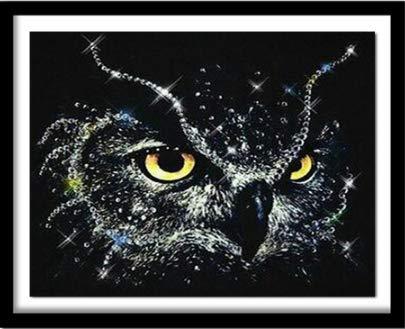 WAZHCY Owl Diamond 3D DIY Diamond Embroidery Figures and Diamond Embroidery on Owl Oil Painting