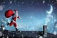 Qinunipoto クリスマス Merry Christmas 写真撮影用 背景布 背景 布 写真 摄影 撮影用 人物撮影 子供撮影 サンタクロース 背景シート 写真館 撮影スタジオ用 自宅用 パーティー ビニール製 3x2m