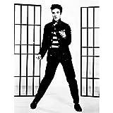 Wee Blue Coo Music Vintage Photography Elvis Presley