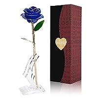 【🌹Regalo ideale e perfetto 💕】La rosa rappresenta l'amore, la bellezza e l'oro è il simbolo dell'eternità. La rosa dorata, che simboleggia l'amore eterno.può regalare agli amanti, alla famiglia, agli amici. Ed è anche usato per la proposta di matrimon...