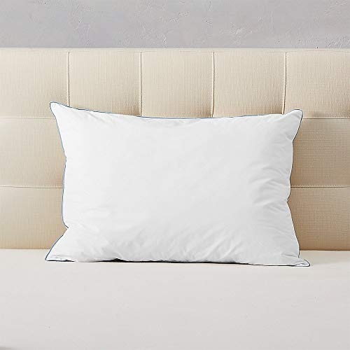 Eddie Bauer Unisex-Adult FreeCool PCM Down Alternative Pillow, White Standard Me