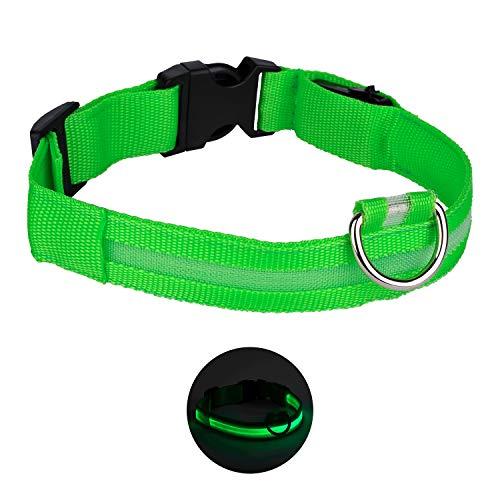 Luz led Recargable para Perro Muy Resistente e Impermeable. Collar Ajustable de...