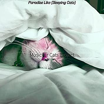 Paradise Like (Sleeping Cats)