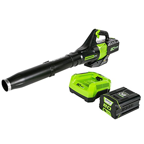 Best rechargeable leaf blower