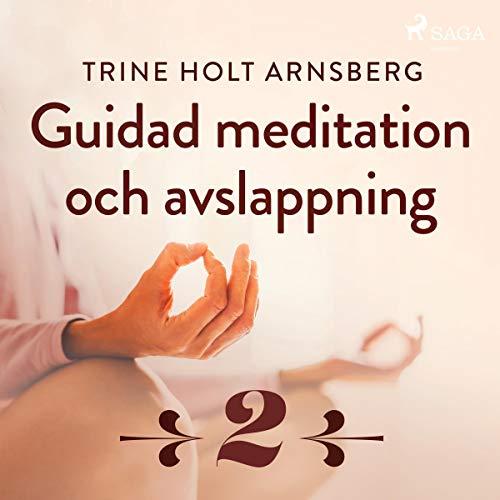Guidad meditation och avslappning 2 audiobook cover art