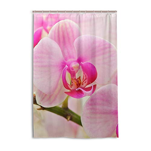MONTOJ rosa Orchideen Blüten Home Decor Duschvorhang Badvorhang Stoff Badezimmer Dekor Set mit Haken, langlebig & super wasserdicht 121,9 x 182,9 cm