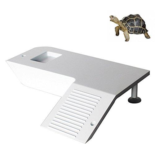 Alicische schildpad kikker drijvend eiland waterdier Reptiel benodigdheden Aquarium Ornament schildpad pier Reptiel Habitat huisdecoratie