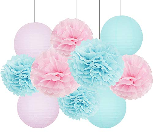 Gender Reveal Party Decorations Baby Shower Decorations Baby Blue Pink Tissue Paper Pom Pom Flowers Paper Lanterns for Birthday/Pink and Blue Decorations/Gender Reveal Decorations