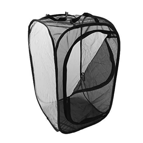 FLAMEER Nido Terrario Cría Insecto Plegable Accesorios Casa de Mascota Conveniente Cómodo - M