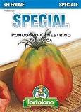 sementi di ortaggi ibride e selezioni speciali ad uso amatoriale in buste termosaldate (80 varietà) (pomodoro canestrino di lucca)