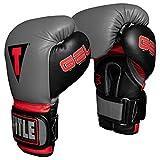 Title Boxing Gel World V2T Weighted Bag Gloves, Grey/Black, Large