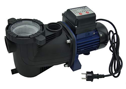 EDENEA Pompe pour Filtration Piscine avec Timer Intégré - 1/2CV - (en complément d'un Filtre)