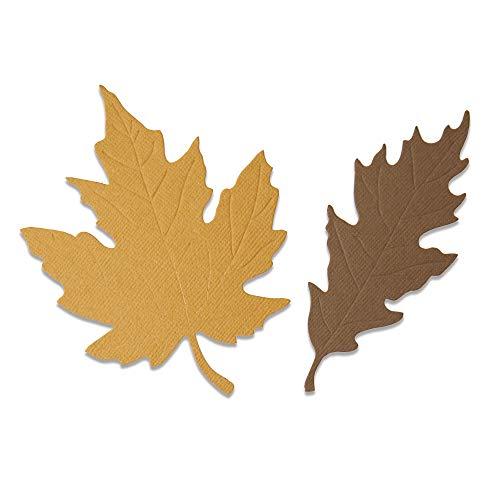 Sizzix Die Autumnal Leaves Fustella Bigz 664590 Foglie autunnali by Jenna Rushforth, Taglia unica