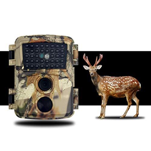 Rsoamy Nachtsicht Wildkamera, Digital HD 1080P Tierkamera, IP66 wasserdichte Kamera für die Wildwildjagd, Erkundung von Tieren im Freien Nachtsichtkamera