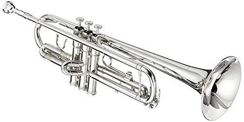 Cherrystone Bb Trompete mit Koffer und Zubehör in silber