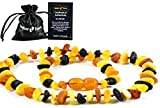 Amber Necklace (Unisex) - Anti inFlammatory, Pain Reduce Properties - Certificated Natural Baltic Amber, Highest Quality. (13 inch.) (UNPOLISHED)