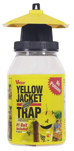 victor insect traps Victor M362 Poison-Free Reusable Yellow Jacket & Flying Insect Trap