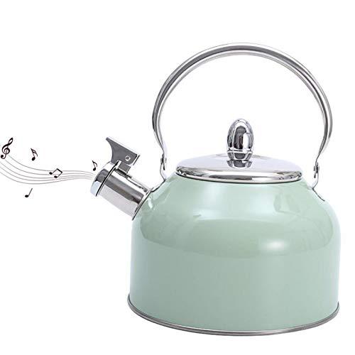 Bollitore per tè con Fischietto a Colori Spray da 2,5l, Teiera in Acciaio Inossidabile con Manico Anti-Caldo, Bollitore per tè E caffè per Fornello a Gas E Fornello a Induzione