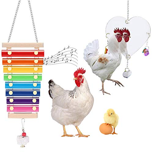 Genriq Chicken Toy,Chicken Mirror Toys and Chicken Xylophone Toy,Hanging Suspensible Bird Toy Chicken Coop Pecking for Chicks Hens Parrot Bird