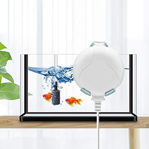 boxtech Sauerstoffpumpe Mini Leise Aquarium Oxygen Luftpumpe mit Air Stone und Silikonschlauch für Fischbecken und Die Nanoaquarien (Weiß)