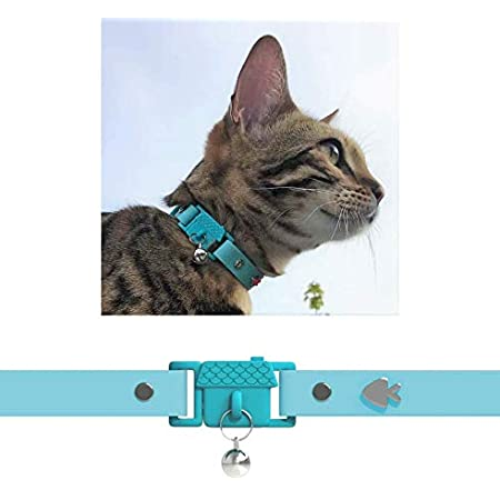 for Adult Cats Kittyrama Cat Collar As Seen in British Vogue Award Winning Other Styles and Colors Available