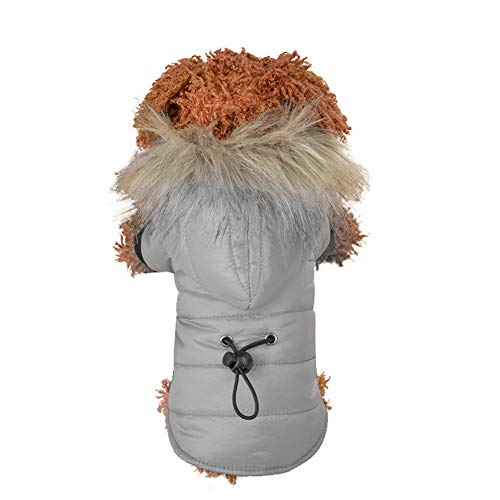 ABRRLO Hondenkleding voor kleine honden, huisdiermantel donsjack met capuchon winterjas hondenjas warme winter warme outfit winter warme hondenkleding huisdier donsjas puppy, Medium, grijs