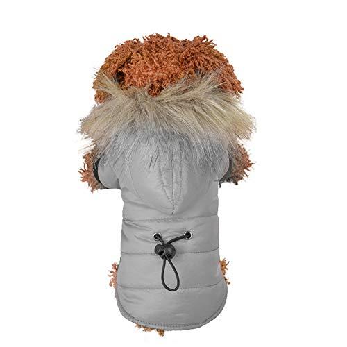 ABRRLO Hondenkleding voor kleine honden, huisdiermantel donsjack met capuchon winterjas hondenjas warme winter warme outfit winter warme hondenkleding huisdier donsjas puppy, Medium, grijs