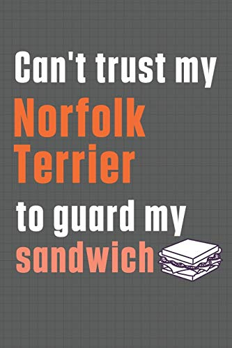 Can't trust my Norfolk Terrier to guard my sandwich: For Norfolk Terrier Dog Breed Fans