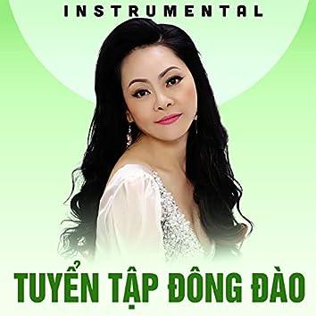 Tuyển tập Đông Đào (Instrumental)