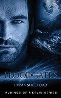 Floodgates (Musings of Merlin)