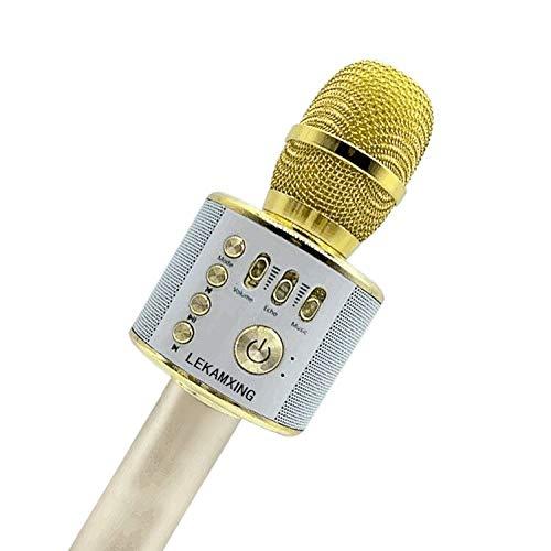 Mikrofon Stereo Player für Musik spielen KTV,Party, Lautsprecher für PC, Laptop, iPad, und Android/IOS oder Alle Smartphone
