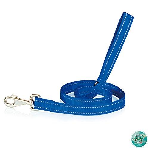 Laisse Bright 25 x 110 Bleu