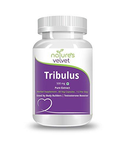 Tribulus Gokshura Gokhura Pure Extract 500 mg 60 Veg Capsul