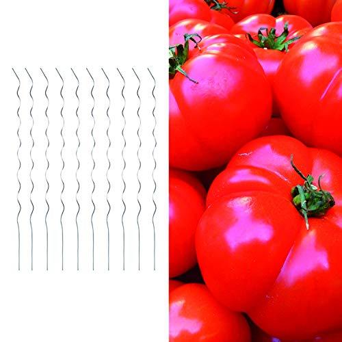Spiralstäbe 180cm Pflanzstäbe Rankstäbe Tomatenstäbe aus verzinktem Metall Rankhilfe für Tomaten und Pflanzen - Sträucher, Mengen:10 Stück