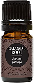Edens Garden Galangal Root Essential Oil, 100% Pure Therapeutic Grade (Highest Quality Aromatherapy Oils- Cold Flu & Sleep), 5 ml