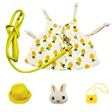 Bunny Rabbit Harness and Leash, Rabbits Clothes for Bunny Guinea Pig Harness Vest and Leash for Rabbit Ferret Guinea Pig Bunny Hamster (S, Gold Pinapple)