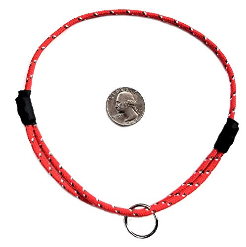 National Leash - Collar de identificación para perro con correa de montaña, color rojo tulipán, tamaño mediano (35,5 a 20 pulgadas) Ultra Lite