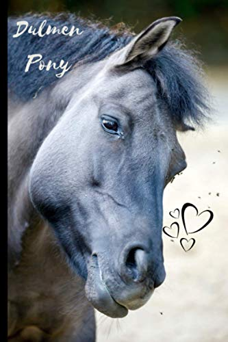 Dulmen Pony Notebook: Composition Notebook 6x9' Blank Lined Journal