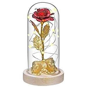 Silk Flower Arrangements Xiaoxingyun Gold Rose Gift Kit, LED Light Flower Galaxy Luminous Rose, Battery Power, Rose Glass Bottle, Romantic Rose, Gift for Mothers Day, Valentines Day, for Women and Wife
