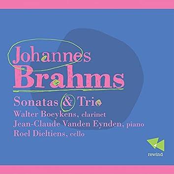 Brahms: Sonatas & Trio