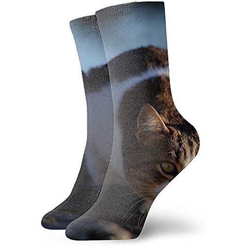 Be-ryl Abstrakter künstlerischer 3D Art Printing Bambi Reindeer Forest Vector Unisexsport-Auslese-Socken