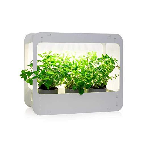 NewSafe - Mini Jardín LED Interior y Lámpara de Mesa, Huerto Urbano o Lámpara de Cocina, Aerojardín (Blanco)