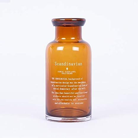 Homevibes Botella de Vidrio Rustica Decorativo Frase Scandinavian, Jarron de Jardin, Uso Exterior… (Naranja, 20)