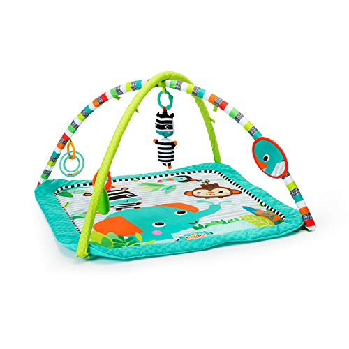 New Bright Starts Zig Zag Safari, Activity Gym