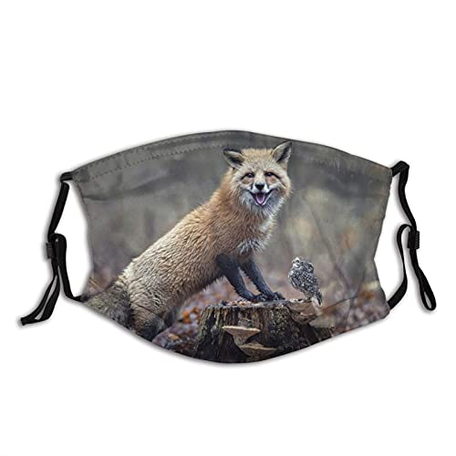 Máscara facial de moda cómoda Naturaleza Bosque Otoño Follaje Pluma Animal Fox Bird Co Sun-Proof Moda Bandana Headwear para la pesca